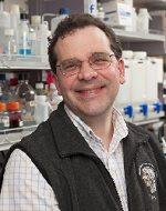 John Brigande, Ph.D.